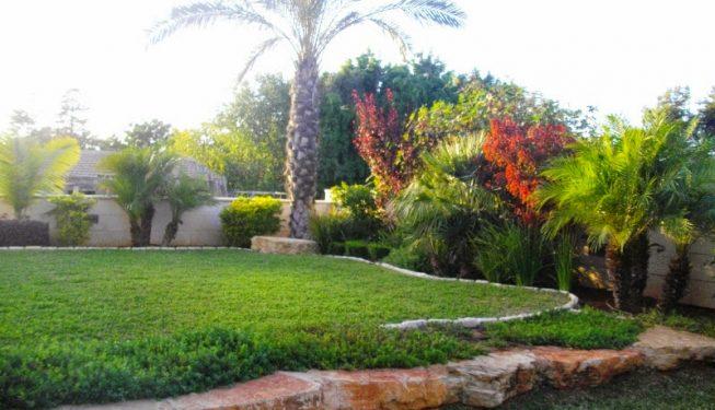 סידור מסלעות בגינה