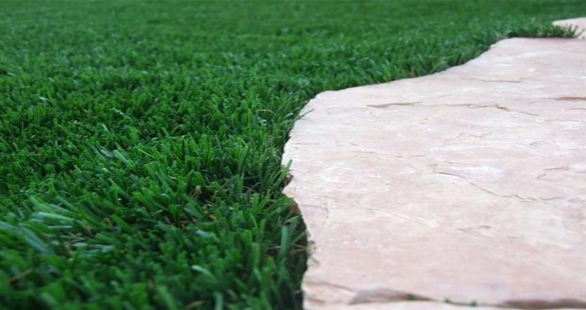דשא דשא גינות פאר יבוא ושיווק