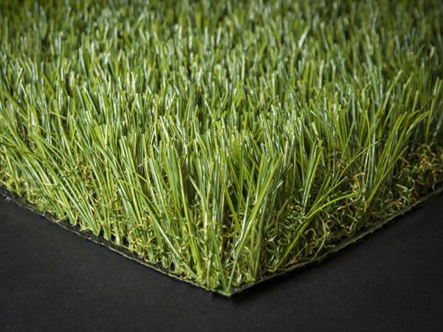 דשא סינטטי פספלום עלית גינות פאר