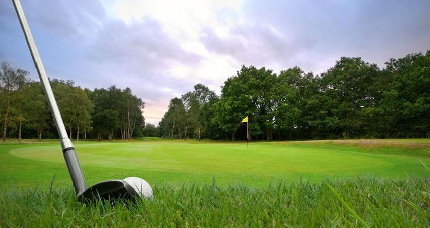 דשא סינתטי לגולף